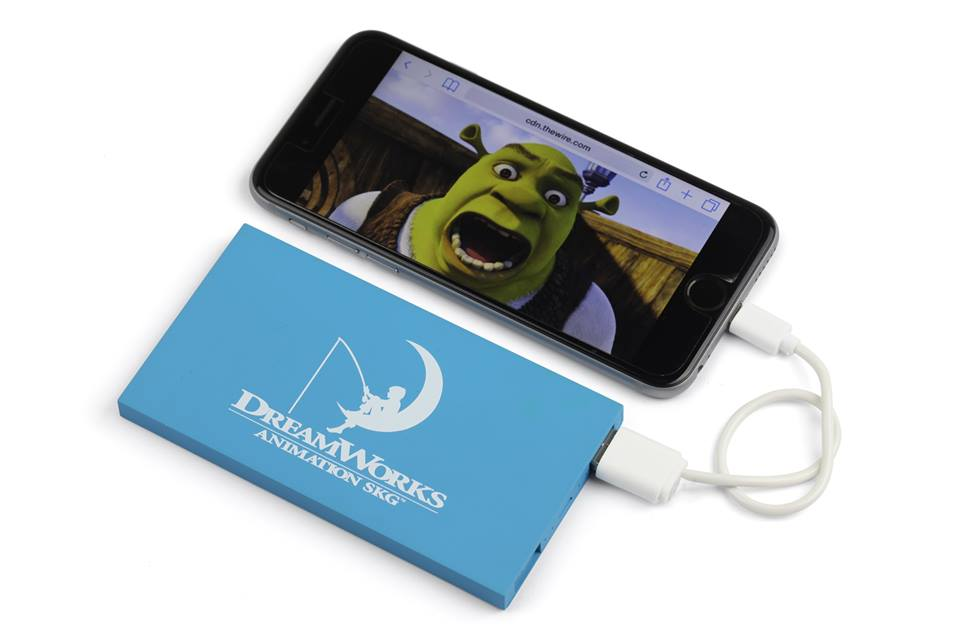 Dual Power Bank