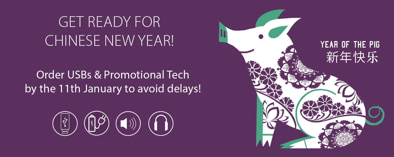 Chinese New Year USB delay warning message with year of pig