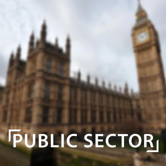 public sector button